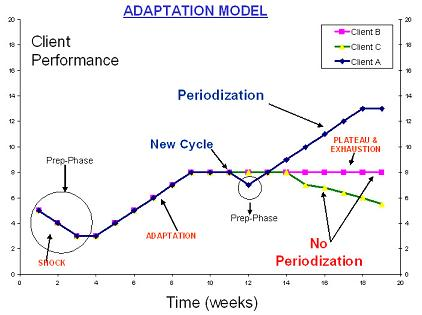 adaptation_model_image