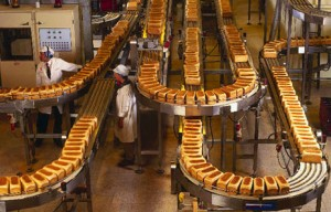 bread factory conveyor belts