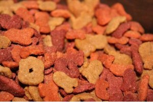 dry cat food color