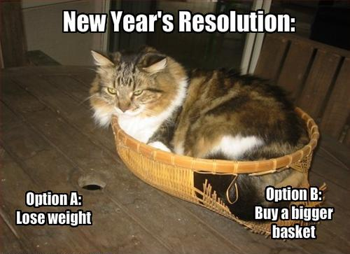 funny-pictures-cat-ponders-his-new-years-resolutions