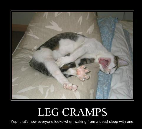 leg cramps cat