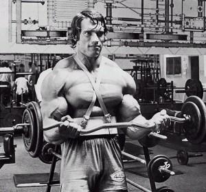 arnold biceps blaster bodybuilding