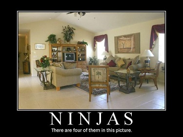 ninjas in living room